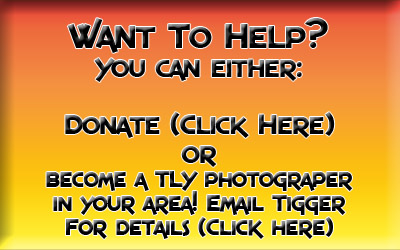 Tigger Loves You - Help